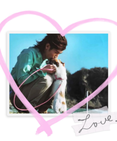 三浦春馬特集愛犬コムギにキス