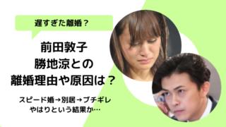 前田敦子離婚5つの理由は何?勝地涼の酒癖原因?短気激怒な性格に育児